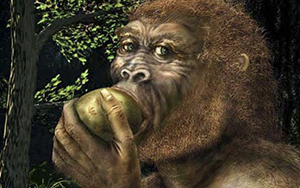 La nutrición natural ancestral del ser humano
